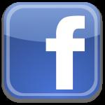 Bomers Paarden Dry Needling Facebook