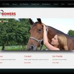 Bomers Paarden Dry Needling