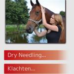 Bomers Paarden Dry Needling Online Folder